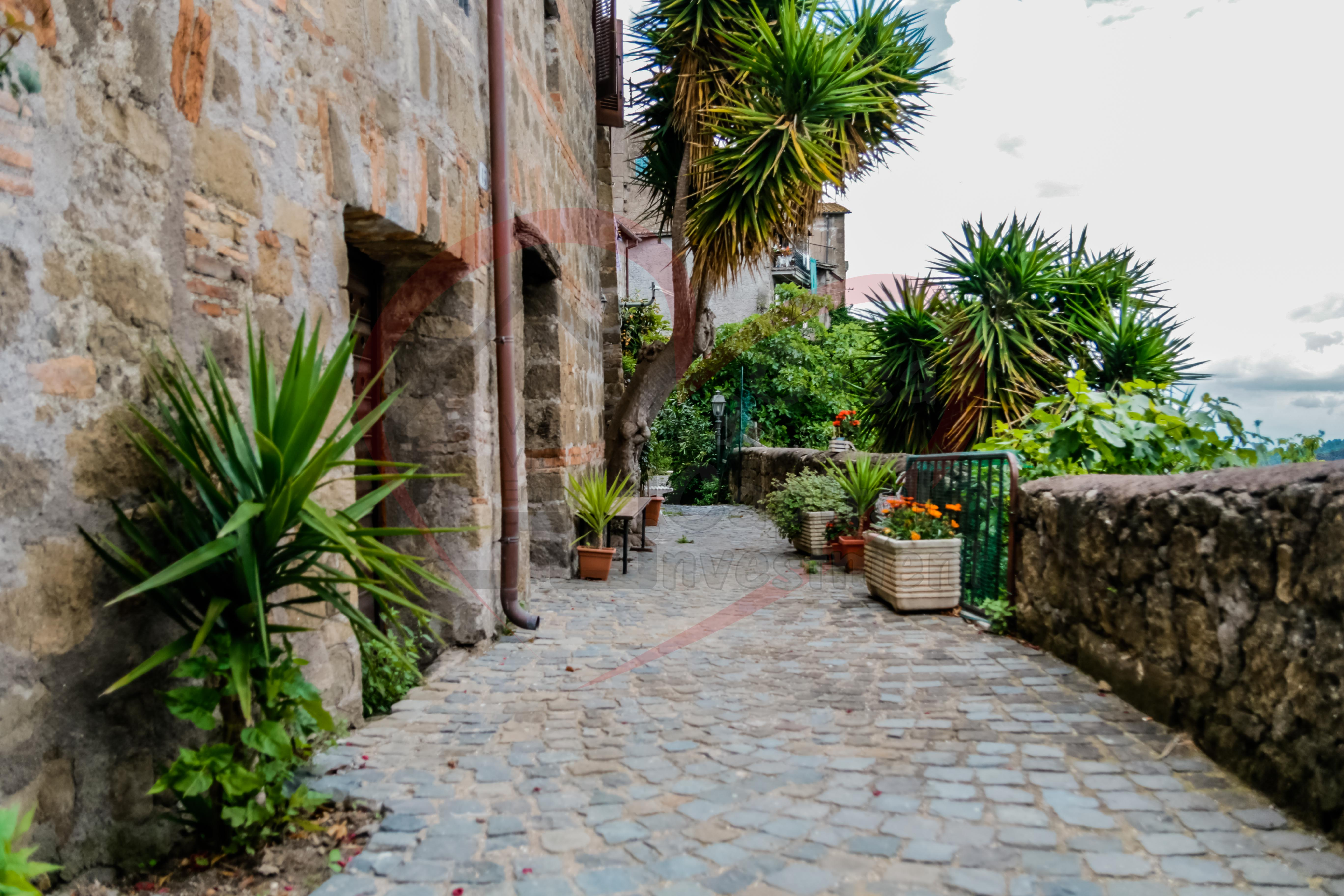 AMAZING PROPERTY IN PRETTY MEDIEVAL  HILL TOWN